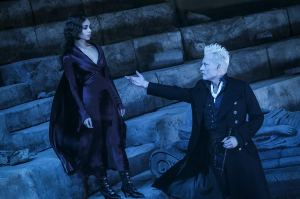 leta and grindelwald